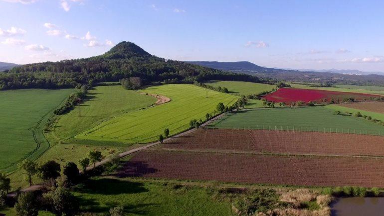 Vodňanští osazují biokoridory původními dřevinami